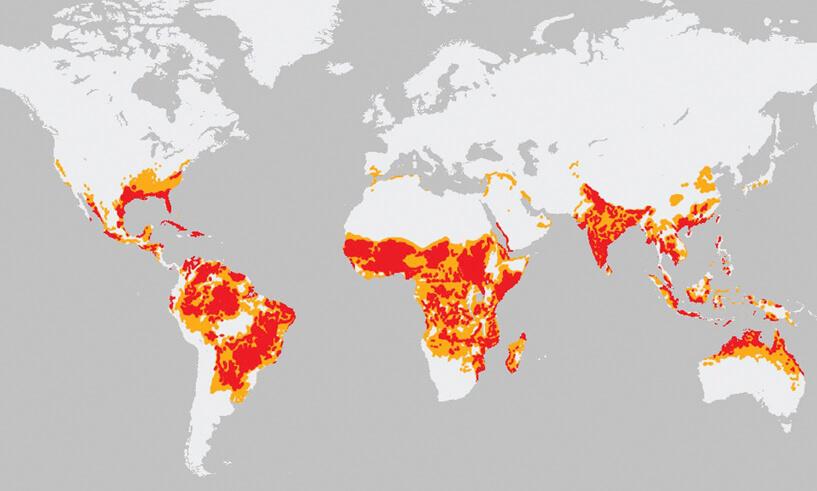 Países con más enfermedades transmitidas por los mosquitos