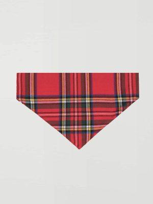 Pañuelo antiparasitario perro escocés 2